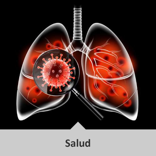 Diseño de pulmones en blanco y negro y en su interior virus de tonalidad rojizos. Encima de los pulmones una lupa, enfocando un virus en su interior. Temática: Salud